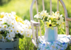 I fiori simbolo dell'estate: linguaggio e significato